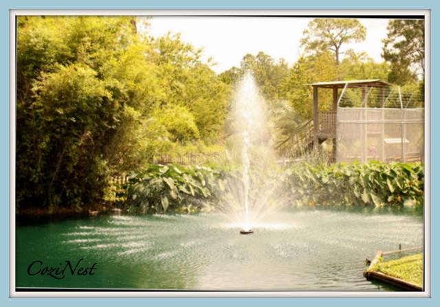 Alabama Coast Zoo Fountain