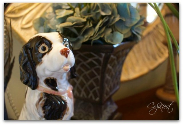 English Spaniel Portrait