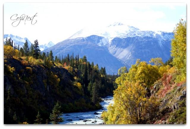 Landscape Yukon