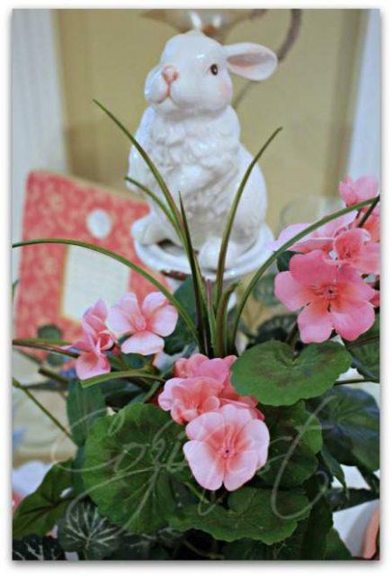 Begonias in October