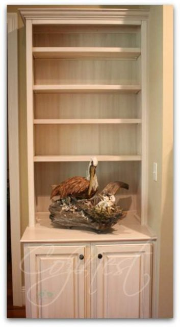 bookcase with pelican