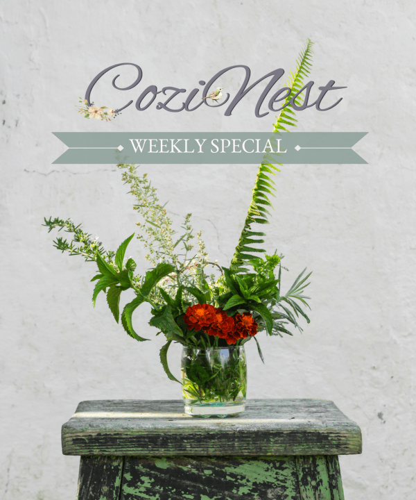 CoziNest Weekly Special4